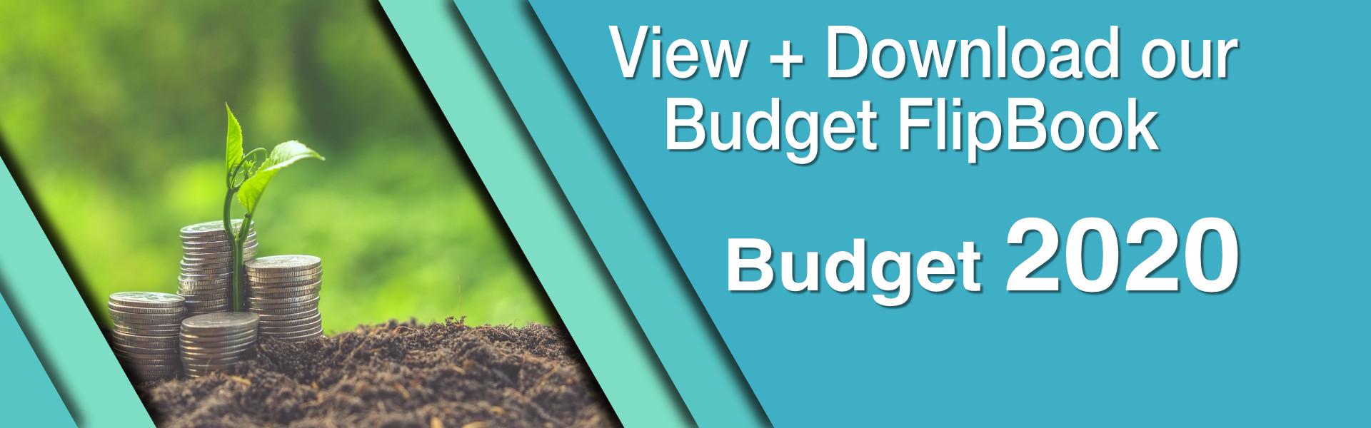 DR_Budget2020