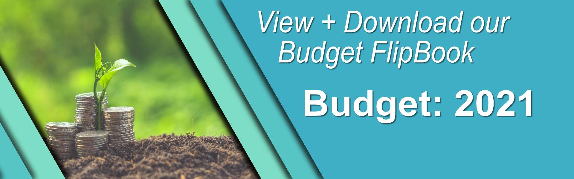 DR_Budget2021